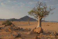 Namibie2004-04